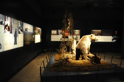 北欧三国11天之旅景点_芬兰北极博物馆