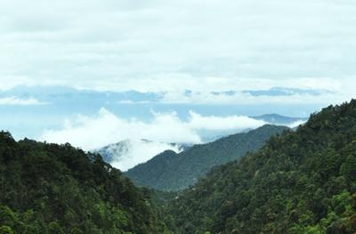 韶关南岭国家森林公园