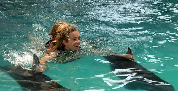 巴厘岛海豚