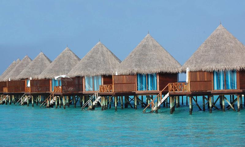 马尔代夫美人蕉岛图片