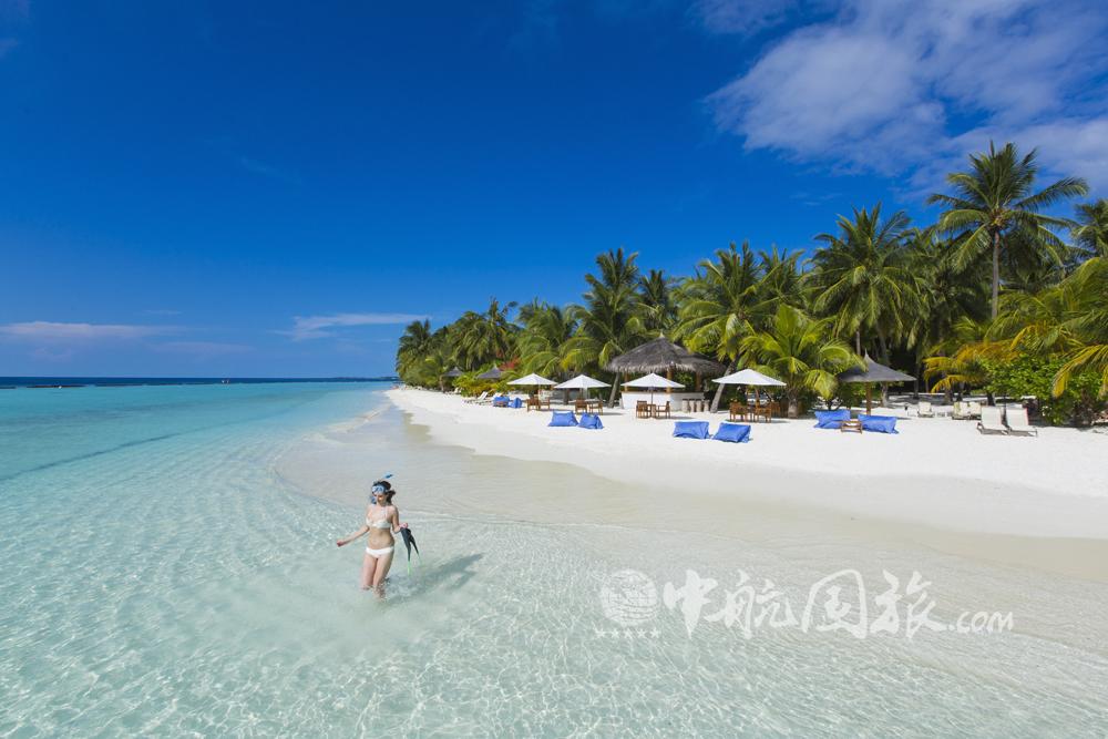 马尔代夫椰子岛图片