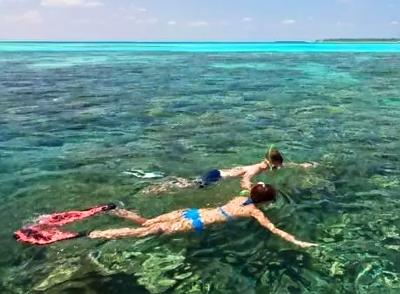马尔代夫马富士岛5天游:马尔代夫出海浮潜