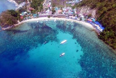 菲律宾海豚湾