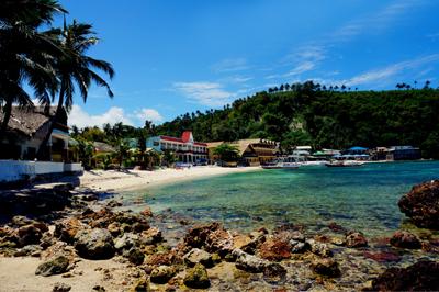 菲律宾旅游_菲律宾海豚湾